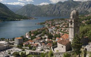 Как россиянам получить внж, паспорт и гражданство черногории