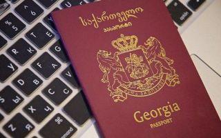 Получение гражданства грузии гражданами россии