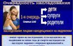 Восьмая очередь наследования по закону: список претендентов