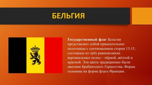 Как иммигрировать в Бельгию из России: плюсы и минусы