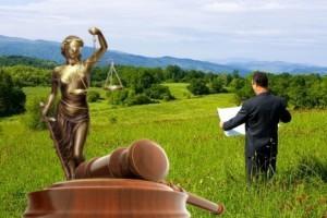 Что такое землеустроительная экспертиза для суда