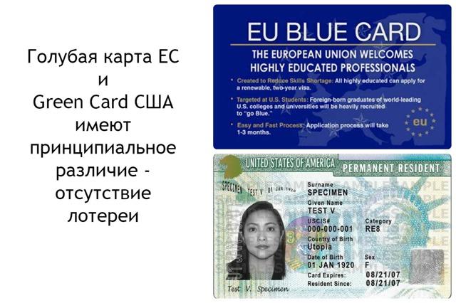 Что такое голубая карта ЕС (Blue card)
