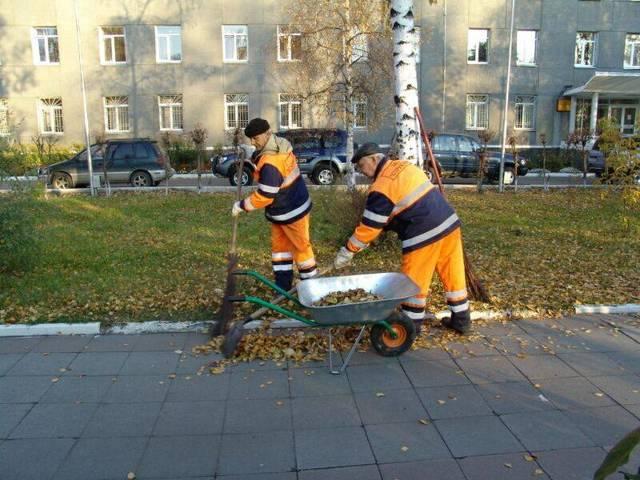 Правила уборки придомовой территории в многоквартирном доме