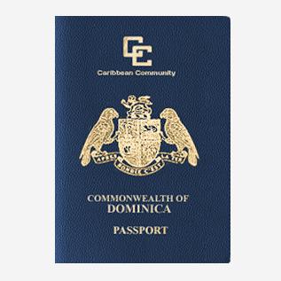 Получение гражданства Албании русскими: иммиграция на ПМЖ