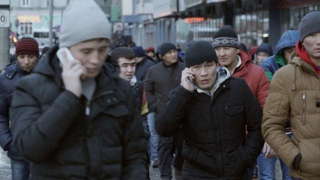 Что такое миграционная карта России: как её получить и правила её заполнения