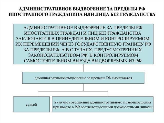 Что такое административное выдворение граждан и какой порядок установление в РФ