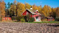 Как проходит процедура приватизации земельного участка