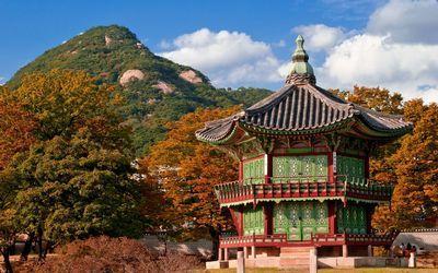 Какая есть работа в Корее для граждан России и что нужно чтобы уехать