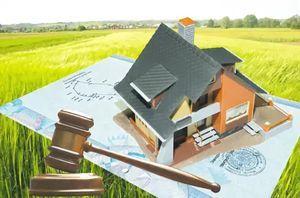 Что такое аукцион земельных участков и как он проводится