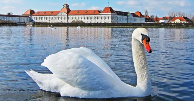 Как эмигрировать из России в Германию