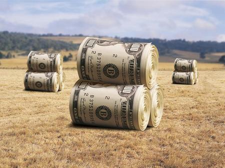 Можно ли взять земельный участок в аренду
