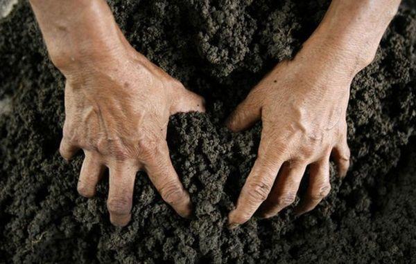 Что такое самовольный захват земельного участка и чем это грозит