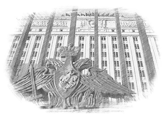 Что такое служебный паспорт гражданина РФ и как его получить