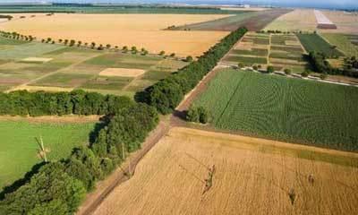 Из чего складывается кадастровая стоимость земельного участка и сколько стоит 1 сотка земли